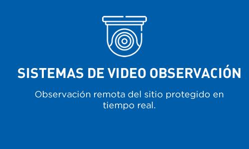 Sistemas de video observación | Observación remota del sitio protegido en tiempo real